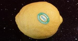 Lemon-PH